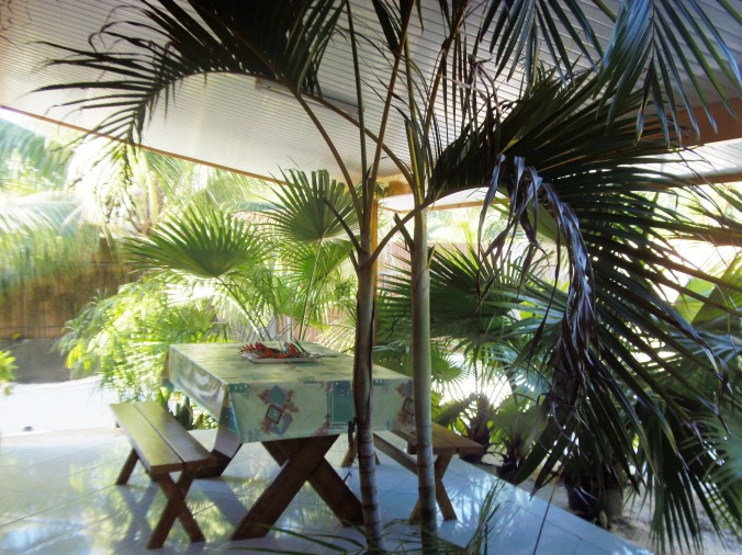 House F3 covered terrace with a table for lunchin the fresh air and enjoy the good life of the islands ...